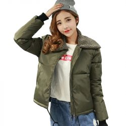 2016-New-Autumn-Winter-Jacket-Coat-Women-Parka-Woman-Clothes-Solid-short-Jacket-Slim-Plus-Size-1