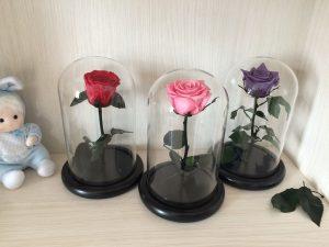 roza-na-aliyekspress-malenkiy-princ
